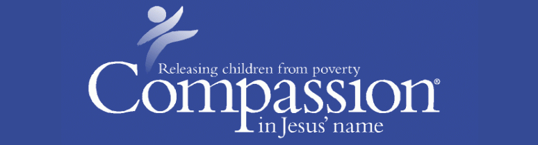 Image and link for Mercy Ministries